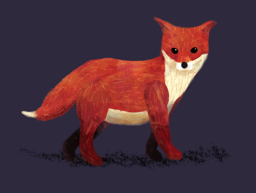 Fuse the Fox Cub - image 2 - student project