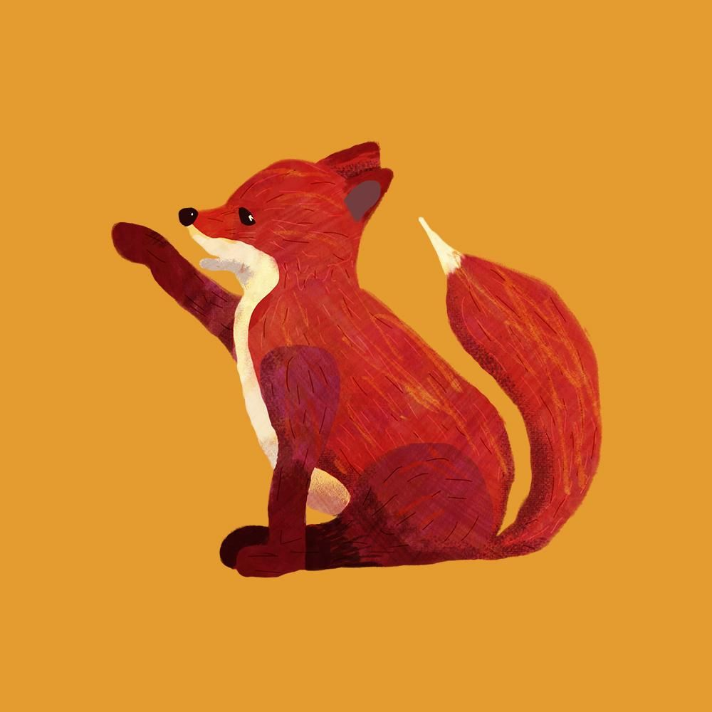 Fuse the Fox Cub - image 4 - student project