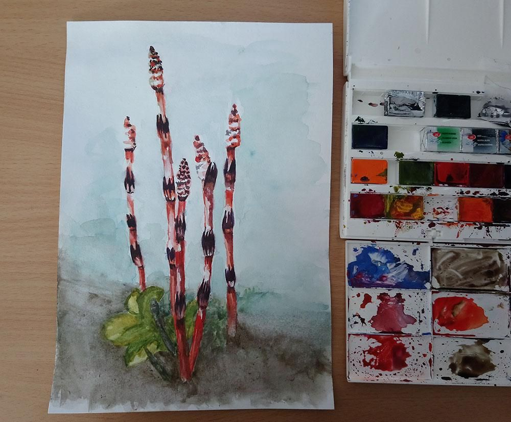 urban plantlife - image 4 - student project
