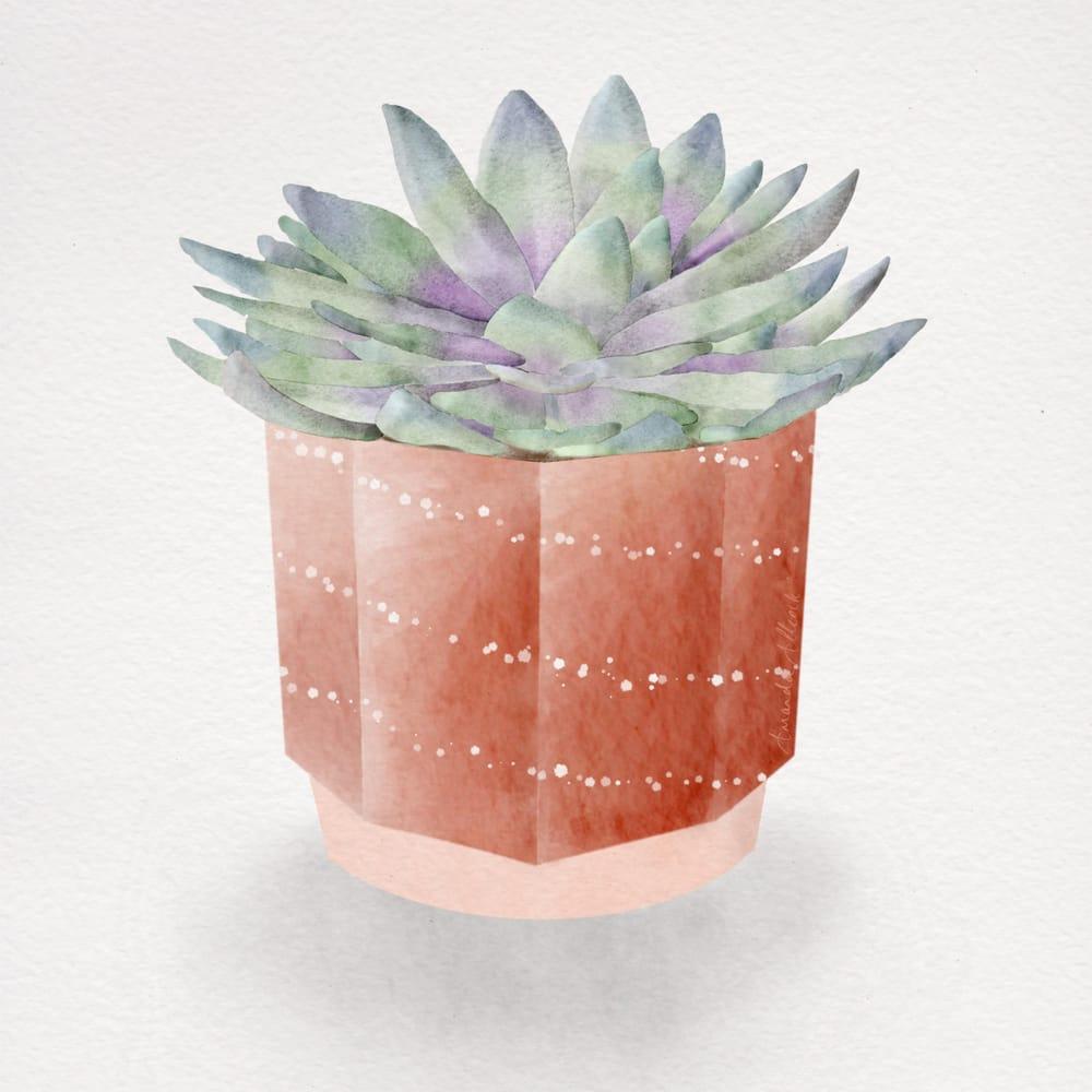 Botanical watercolours - image 2 - student project