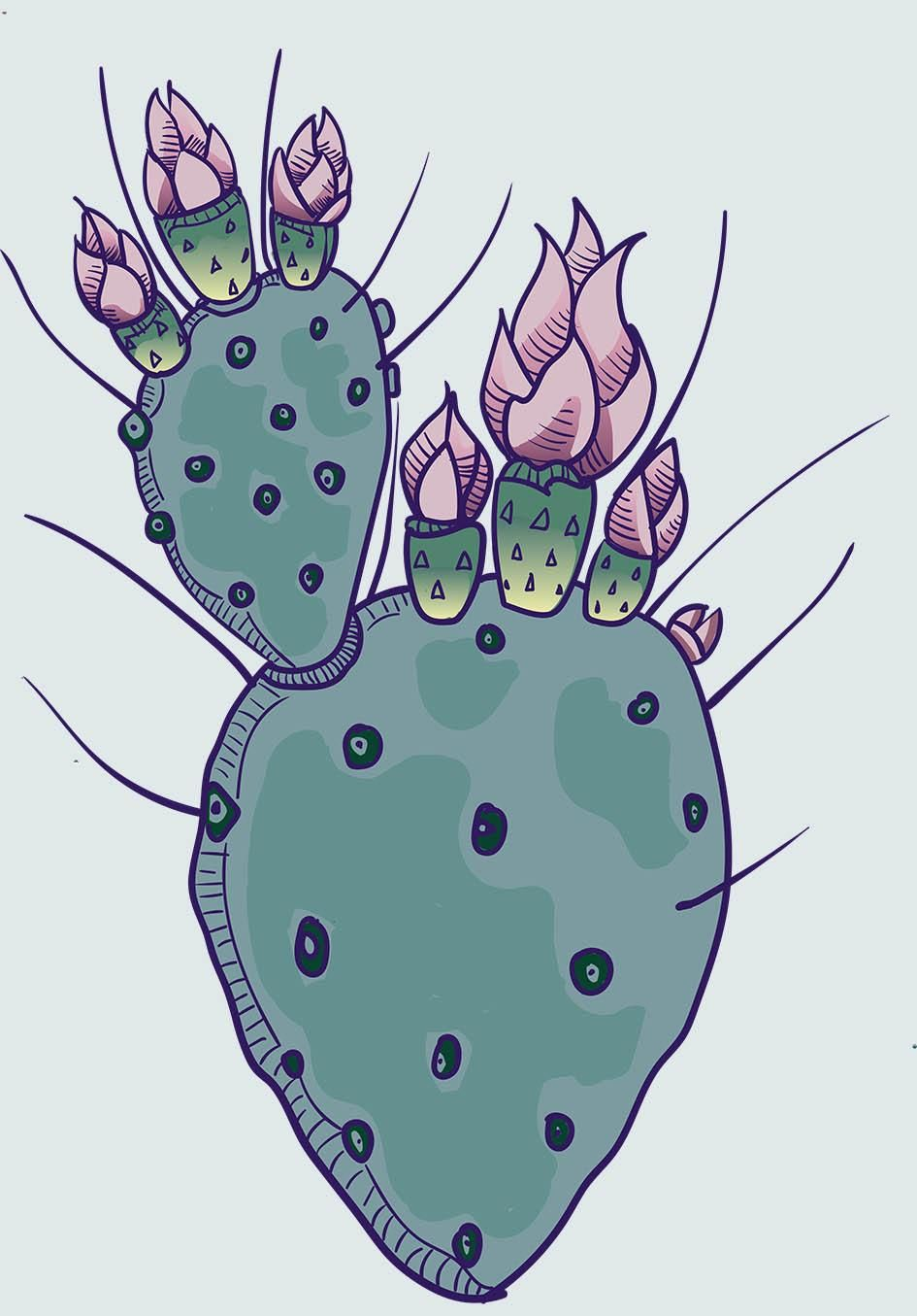 cactus - image 1 - student project