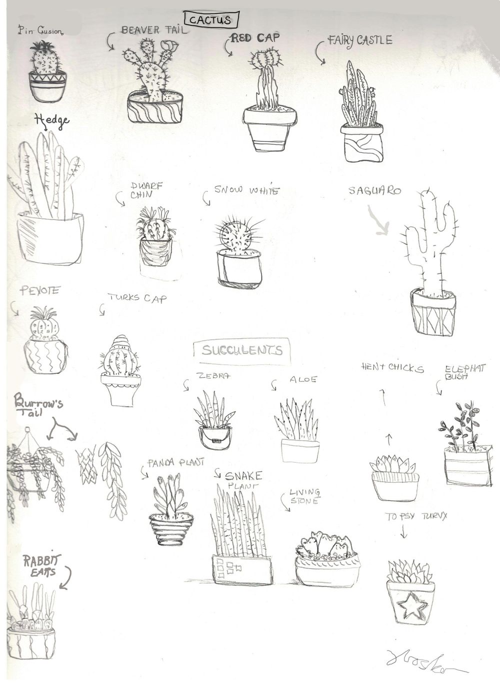 Wild West Cactus Town - image 2 - student project