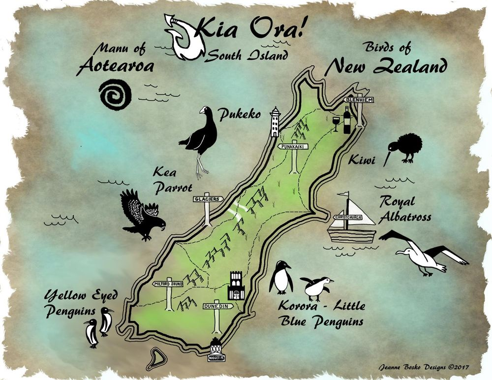 Birds of New Zealand - image 1 - student project