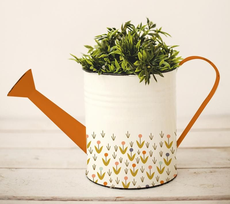 Dreaming about Garden Products - image 9 - student project