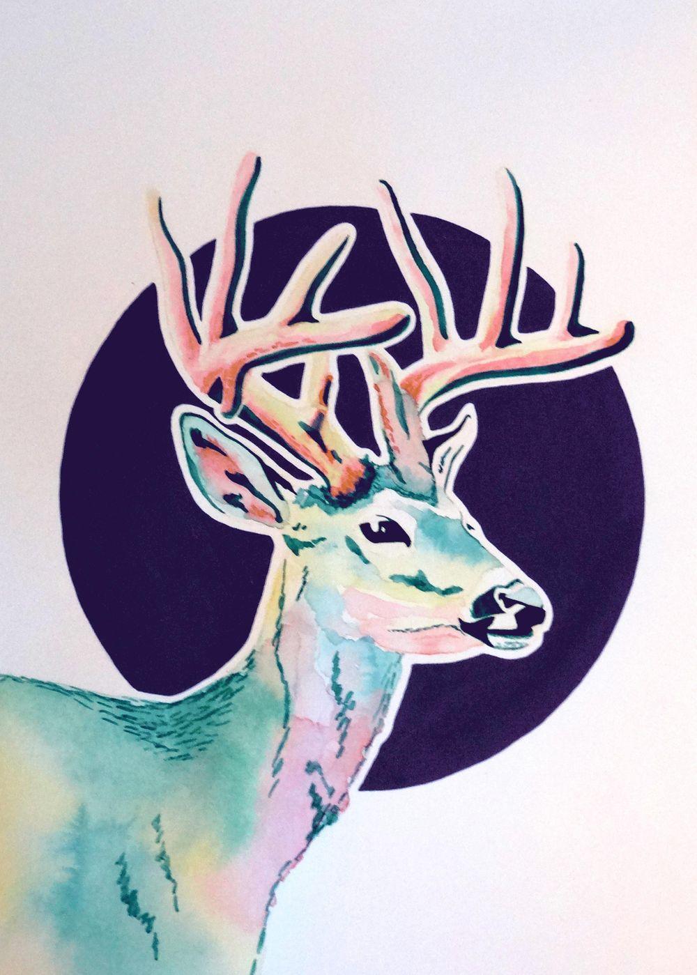 Colorsplash Animals :) - image 4 - student project