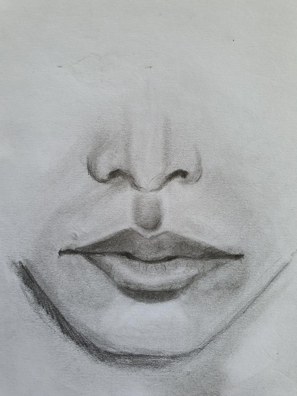 Pencil Portrait with improvised materials - image 3 - student project