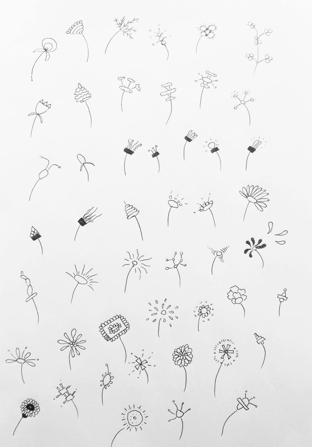 Super fun flower drawing project - image 1 - student project
