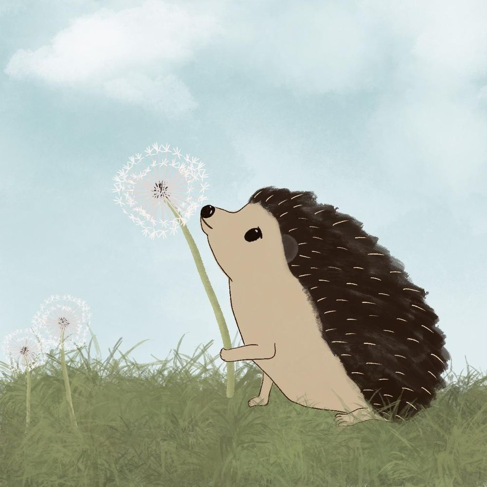Hedgehogs - image 2 - student project