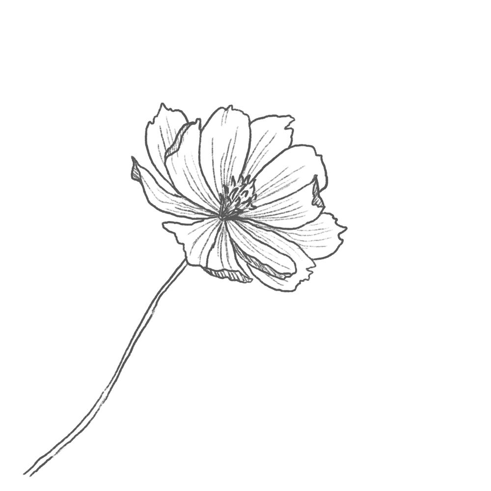 Blue Bouquet - image 3 - student project