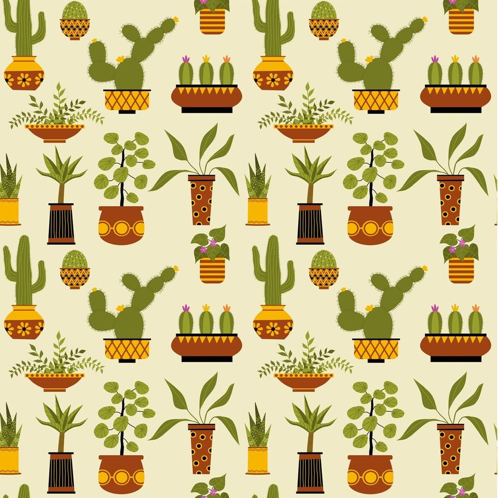 Houseplants - image 4 - student project