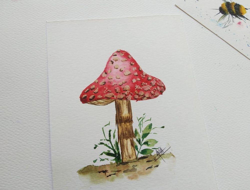 Mushrooms Mushrooms Everywhere... - image 1 - student project
