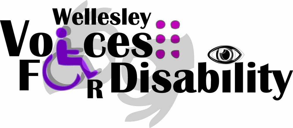 Wellesley Voices for Disability  - image 1 - student project