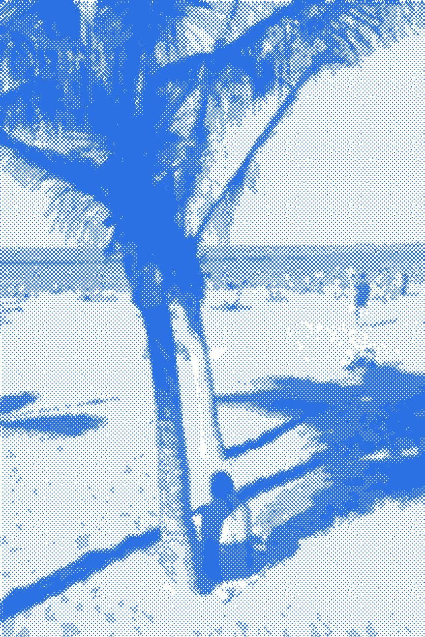 BEACH time - image 1 - student project