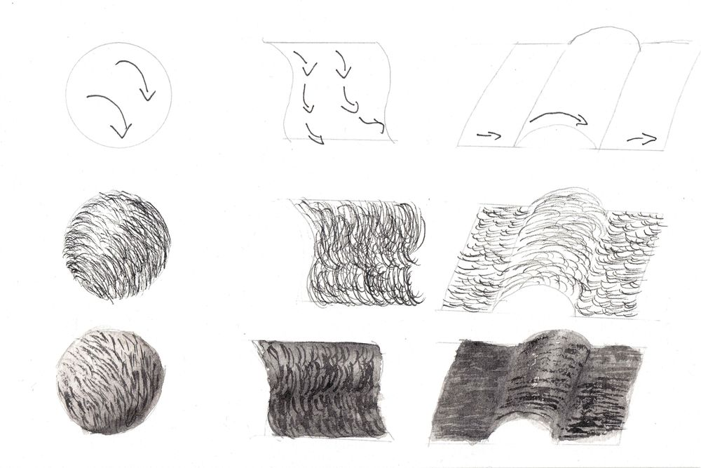 Fur exercises - image 3 - student project