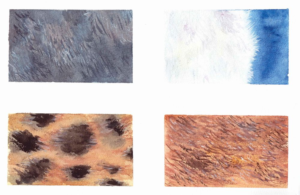 Fur exercises - image 2 - student project