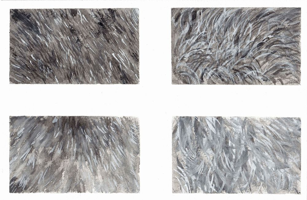 Fur exercises - image 1 - student project