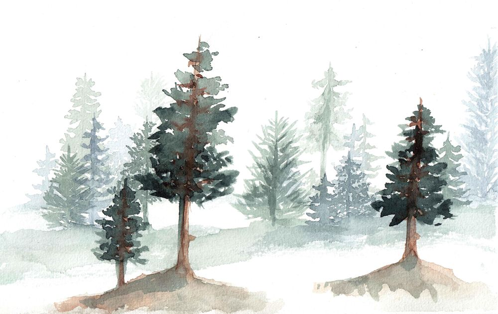 trees, trees, trees - image 3 - student project