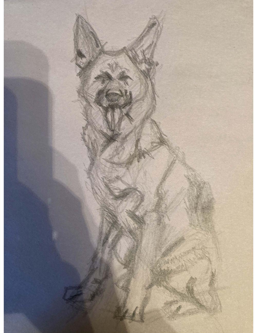 Doggo - image 1 - student project