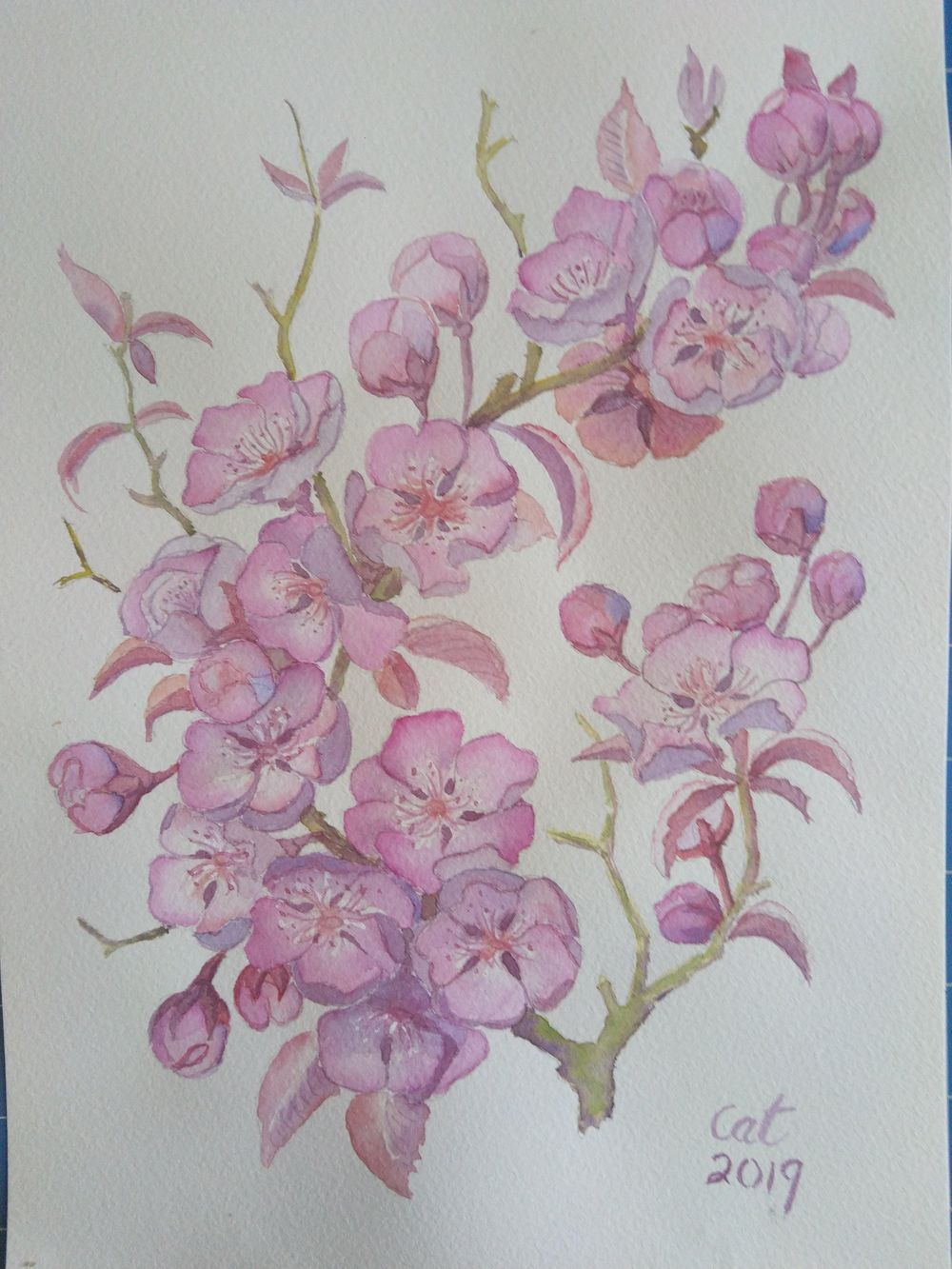 Pink Floral - image 1 - student project