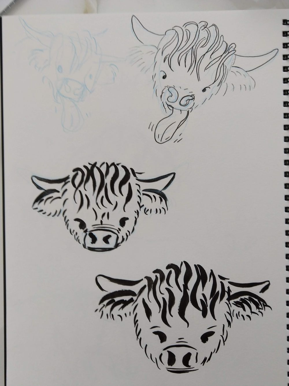 A Wee Coo - image 4 - student project