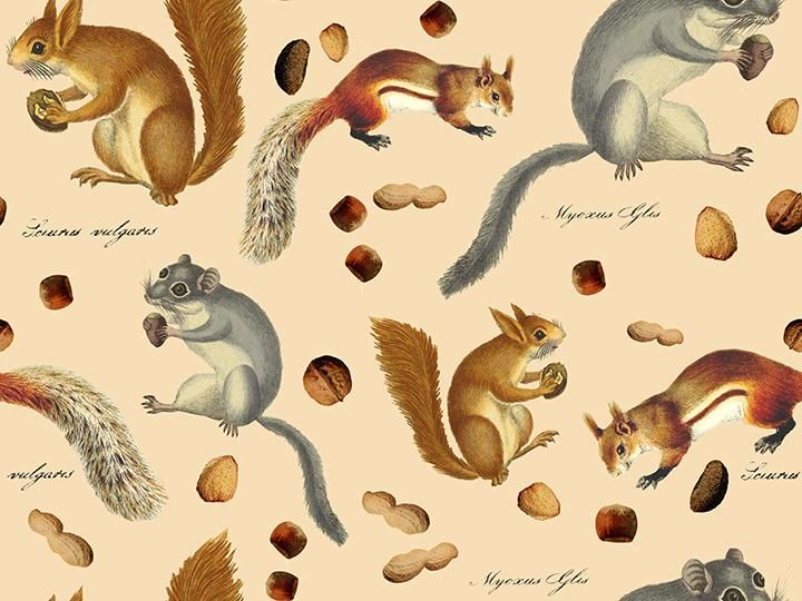 Photoshop Digital Pattern: Nuts For Squirrels - image 2 - student project