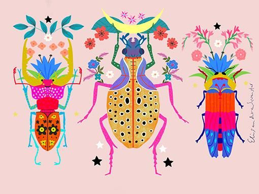 insect beauties - image 1 - student project