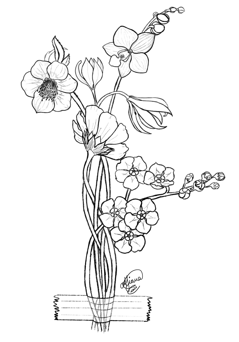 My first botanical illustration - image 2 - student project