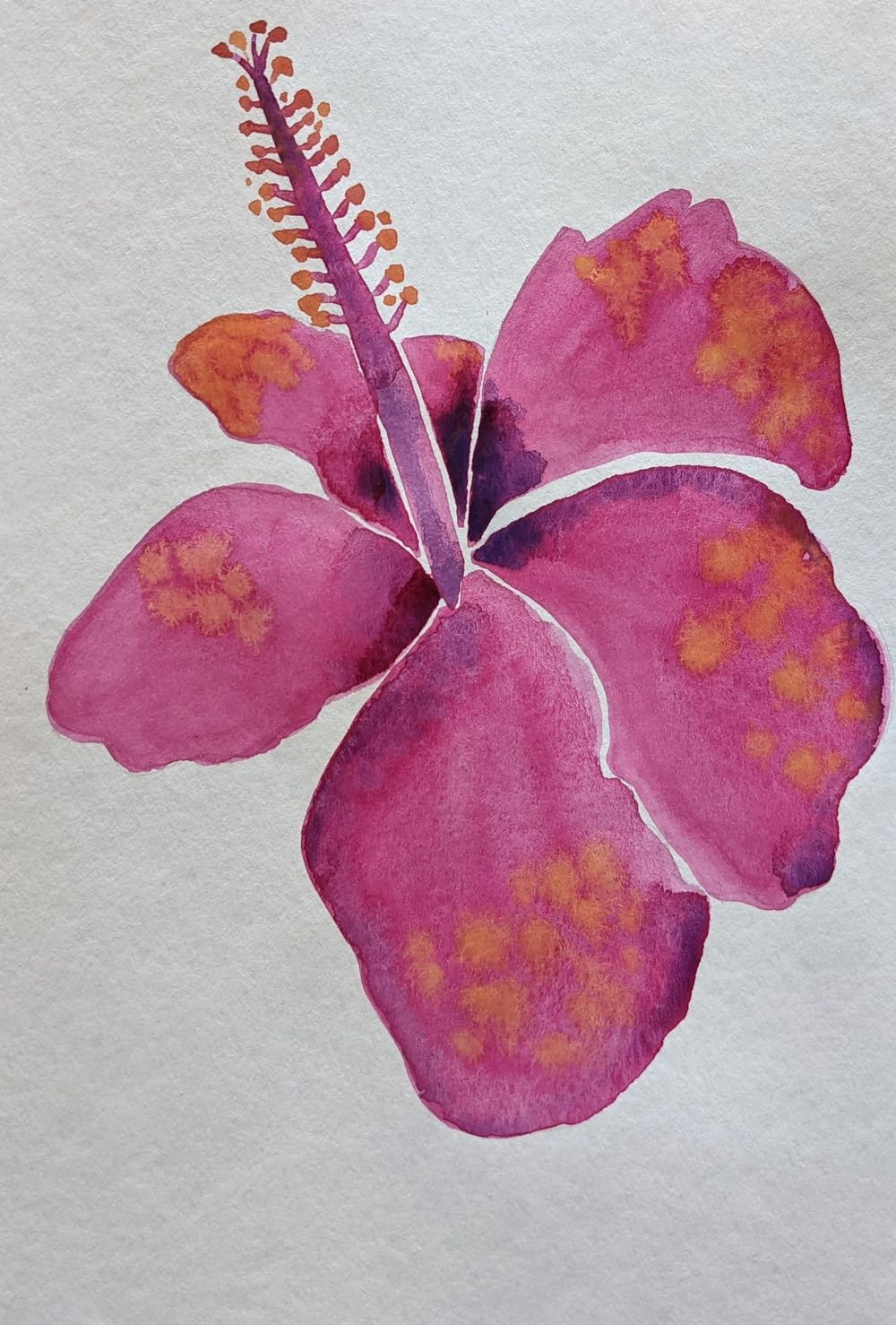 Botanical watercolors - image 3 - student project