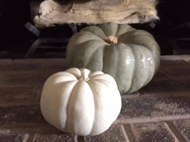 My Grey Tone Pumpkins - image 1 - student project