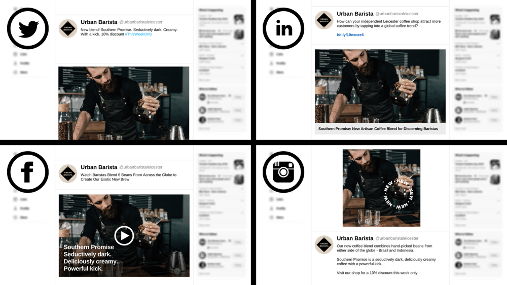 Social Copy in Action: Example Project - image 1 - student project