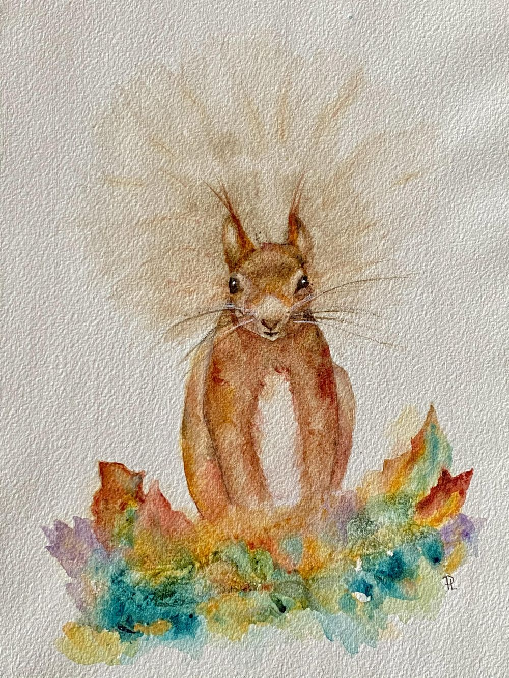 Sidney Squirrel - image 1 - student project