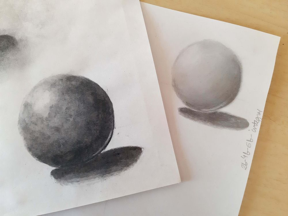 Charcoal and graphite - image 1 - student project