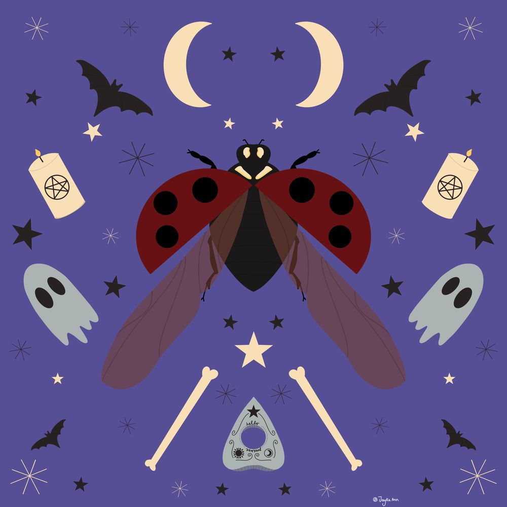 Spooky ladybird - image 3 - student project