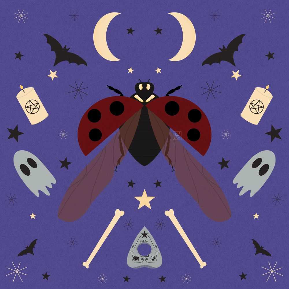 Spooky ladybird - image 4 - student project