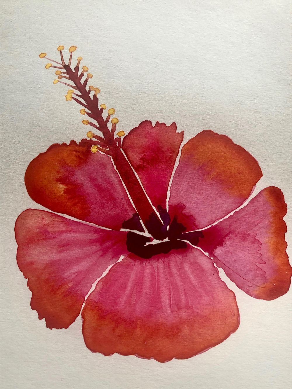 Modern Botanical Watercolors - What a Blast! - image 5 - student project