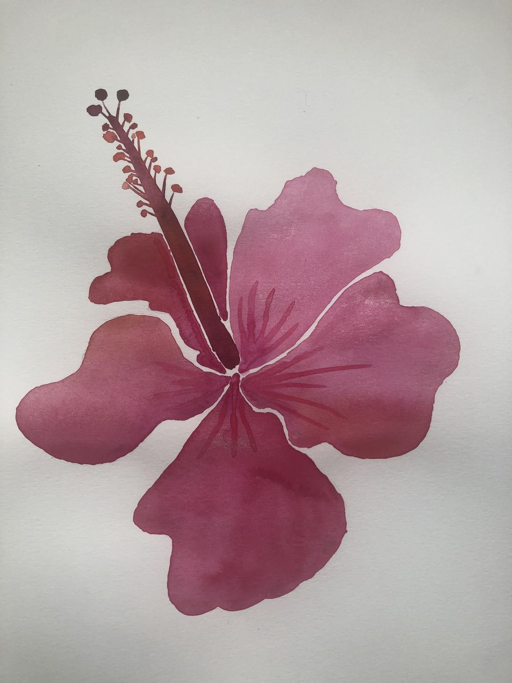 Modern Botanical Watercolors - What a Blast! - image 6 - student project