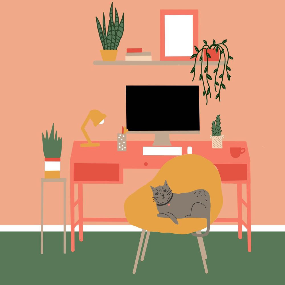 Studio cat - image 1 - student project