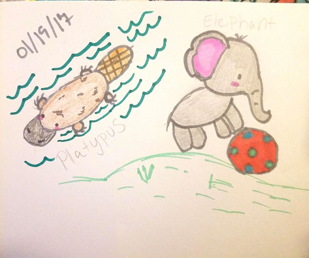 Platypus and elephant :D - image 1 - student project