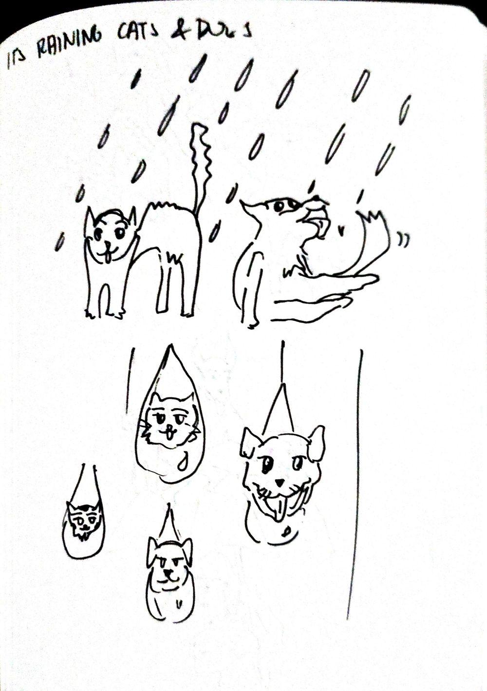 Idiom Illustration - image 1 - student project