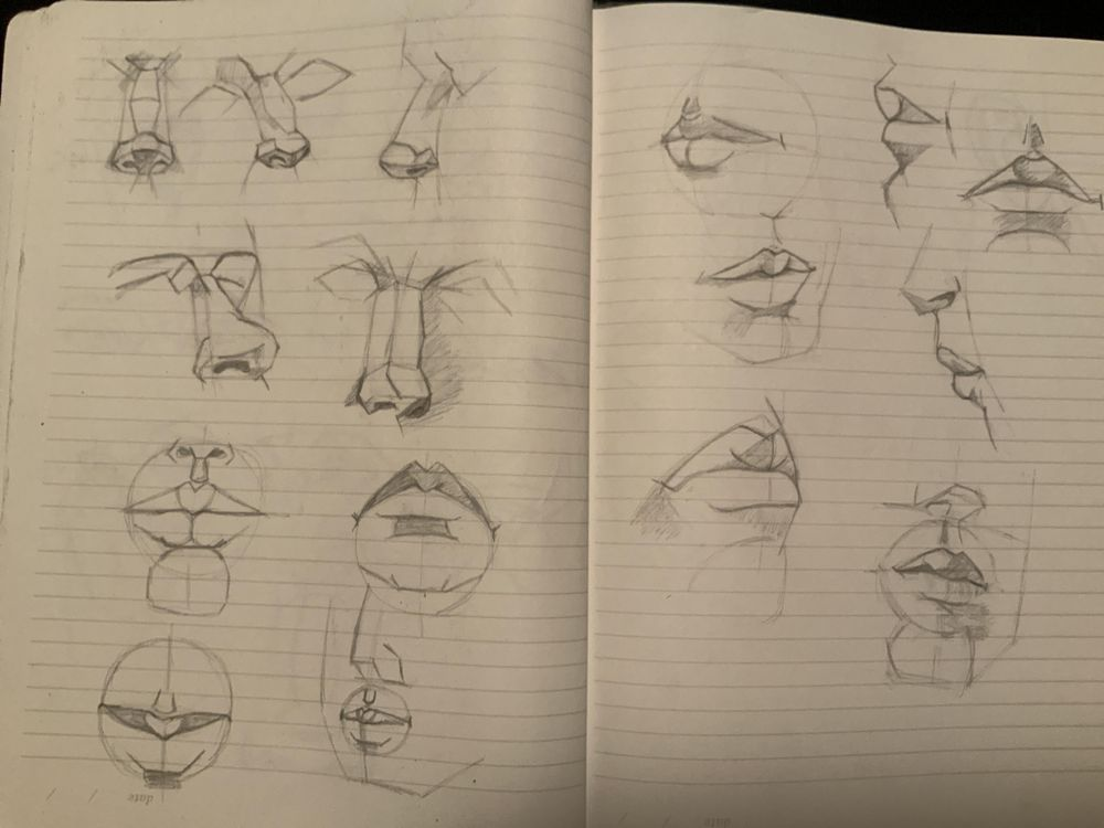 Facial features - image 3 - student project