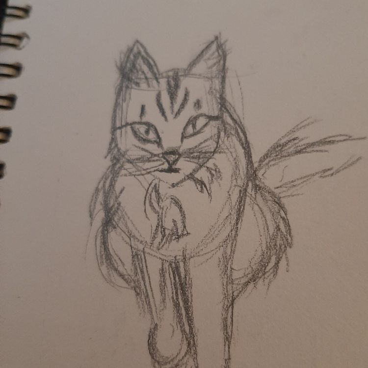 something I love (cats) - image 1 - student project