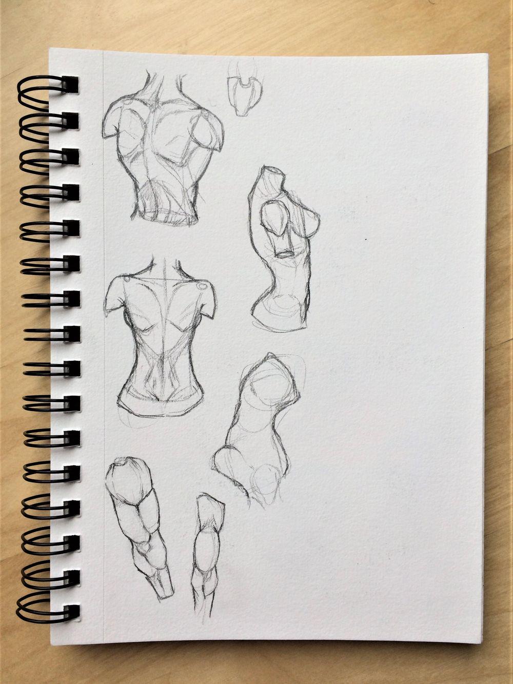 Figure Studies - image 4 - student project