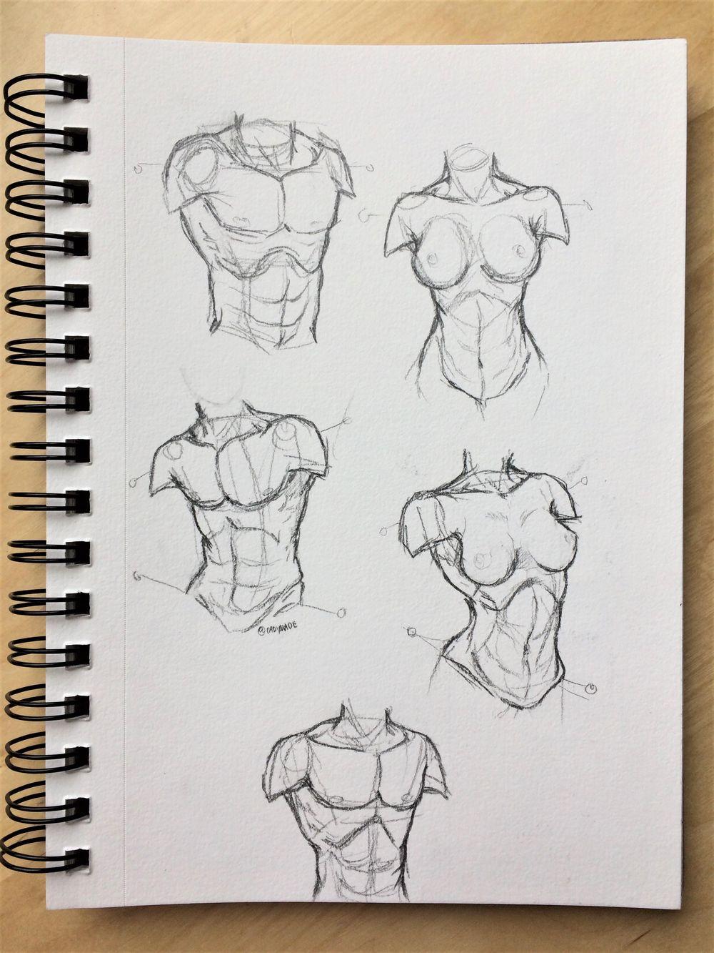 Figure Studies - image 3 - student project