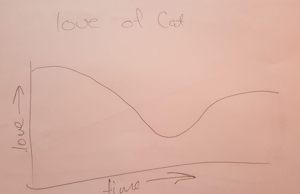 Love for my Cat Over Time - image 1 - student project