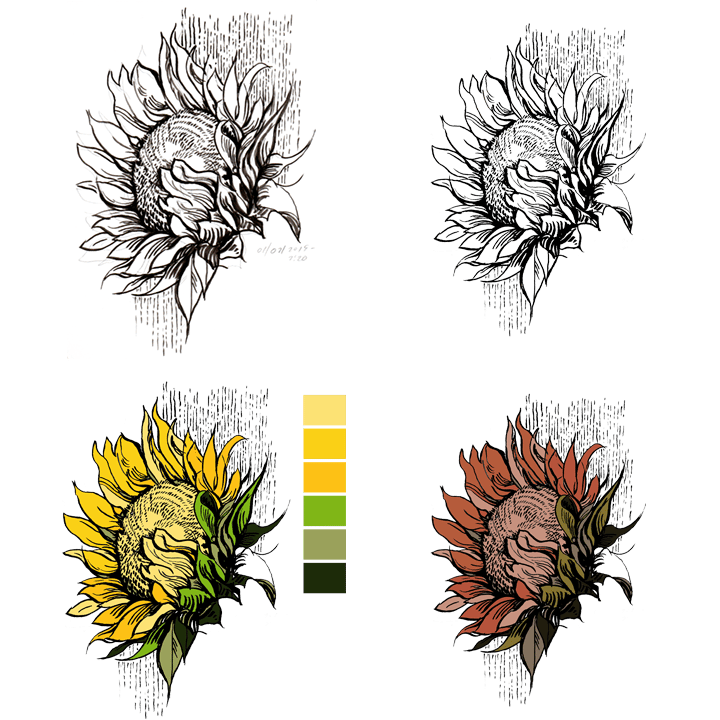 Sunflower - image 1 - student project