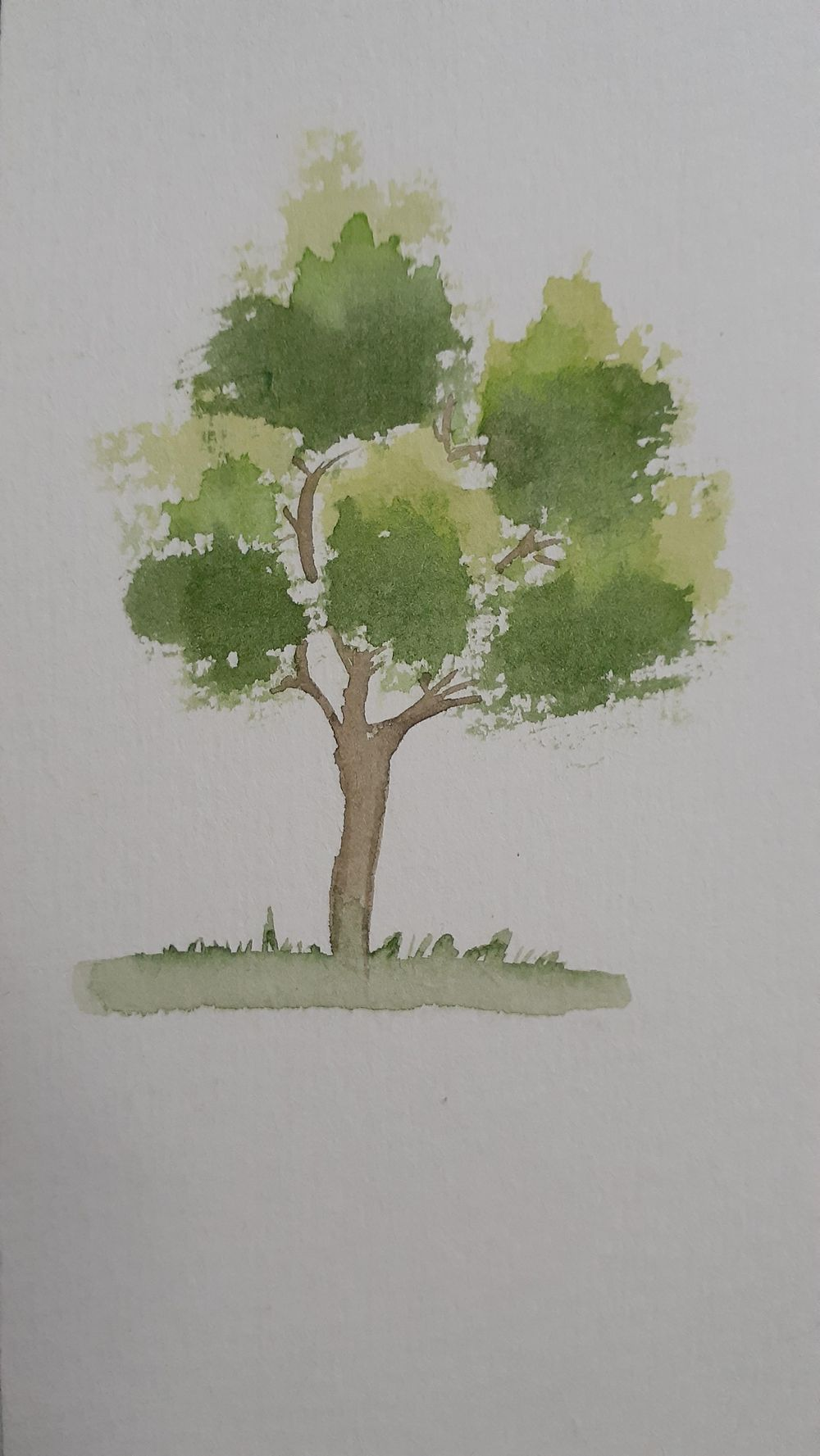 Watercolor Trees by Michelle - image 1 - student project