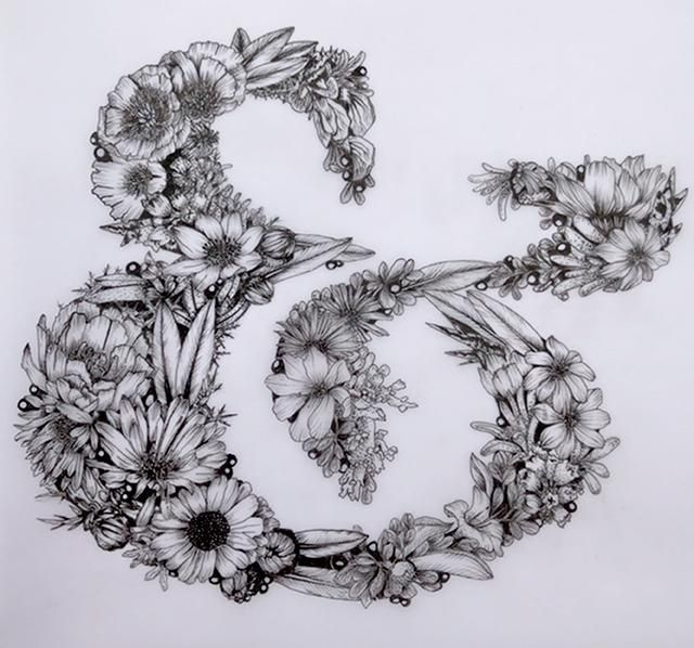 Ampersand and Patagonian flora - image 3 - student project