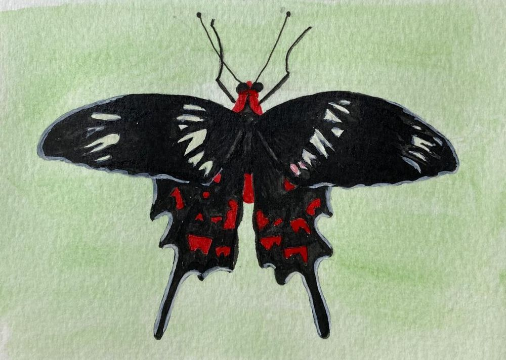 Crimson Lake - image 1 - student project