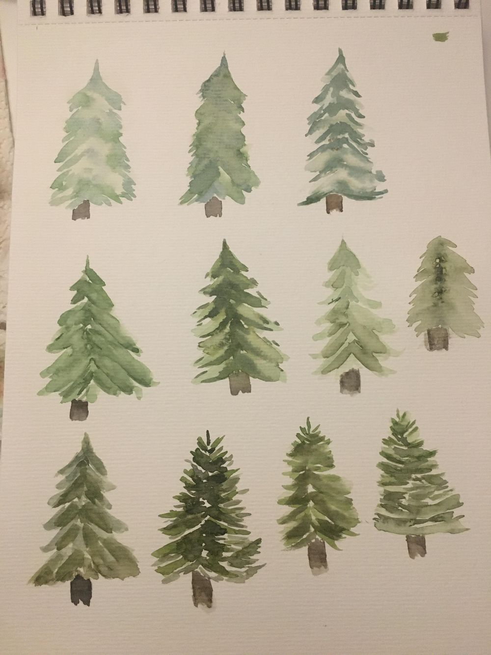 Christmas trees - image 1 - student project