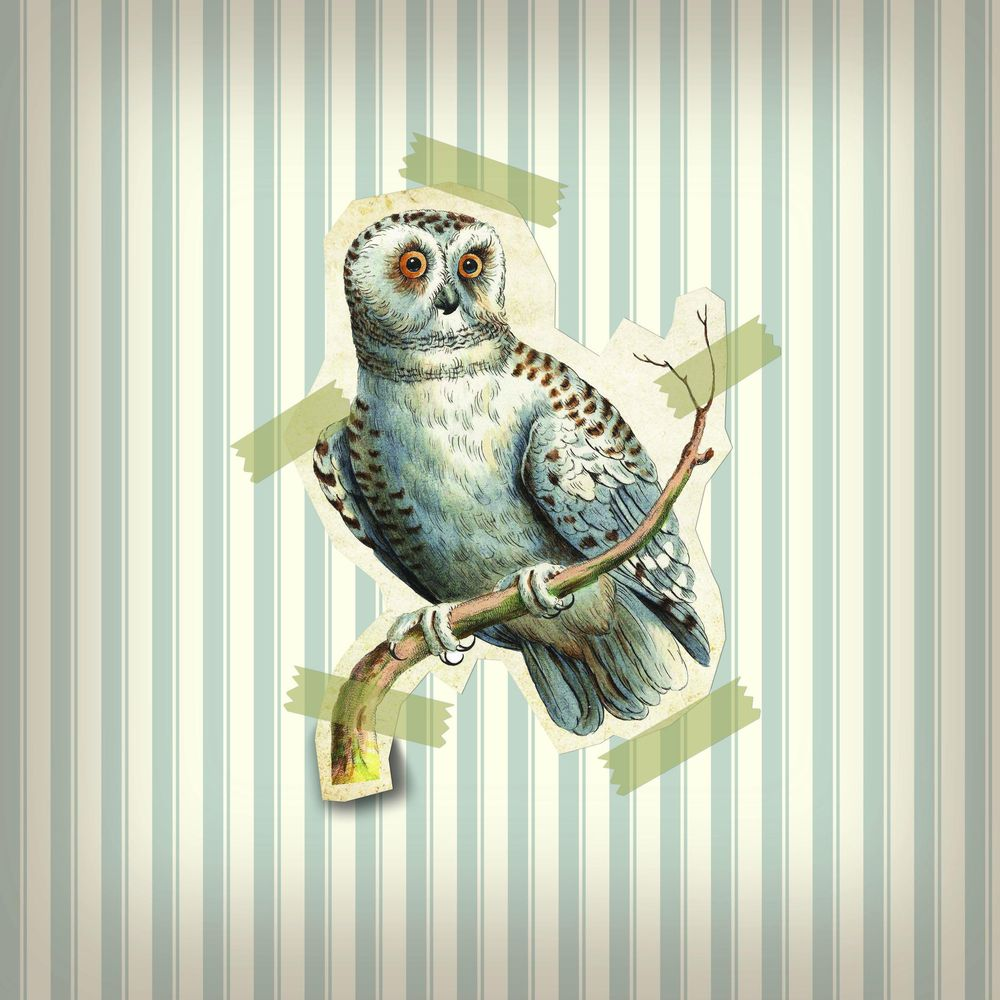 Vintage owl - image 1 - student project